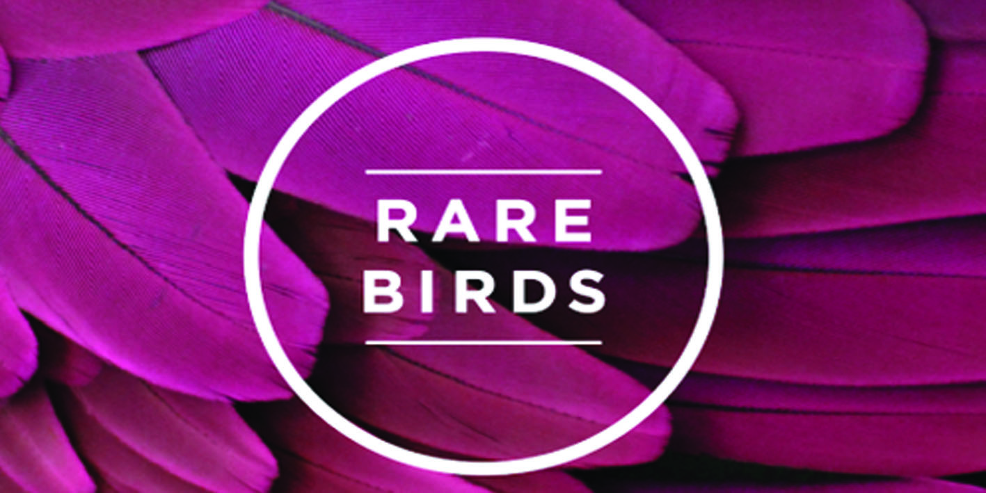 Inspiring Rare Birds – The Value of a Mentor